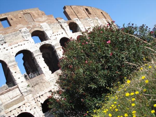 Coliseu 1